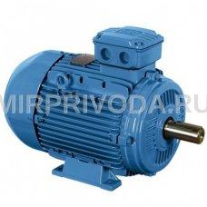 Электродвигатель  Weg W22 180M 4 B5